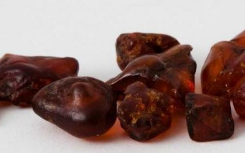 Sachalin Amber Picture Ambergallery
